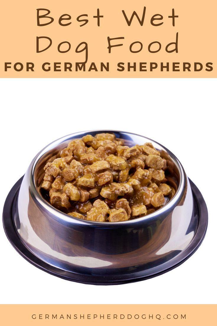 best wet food for goldendoodle puppy