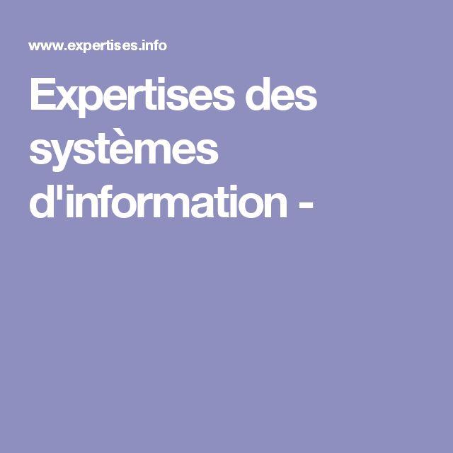Expertises des systèmes d'information -