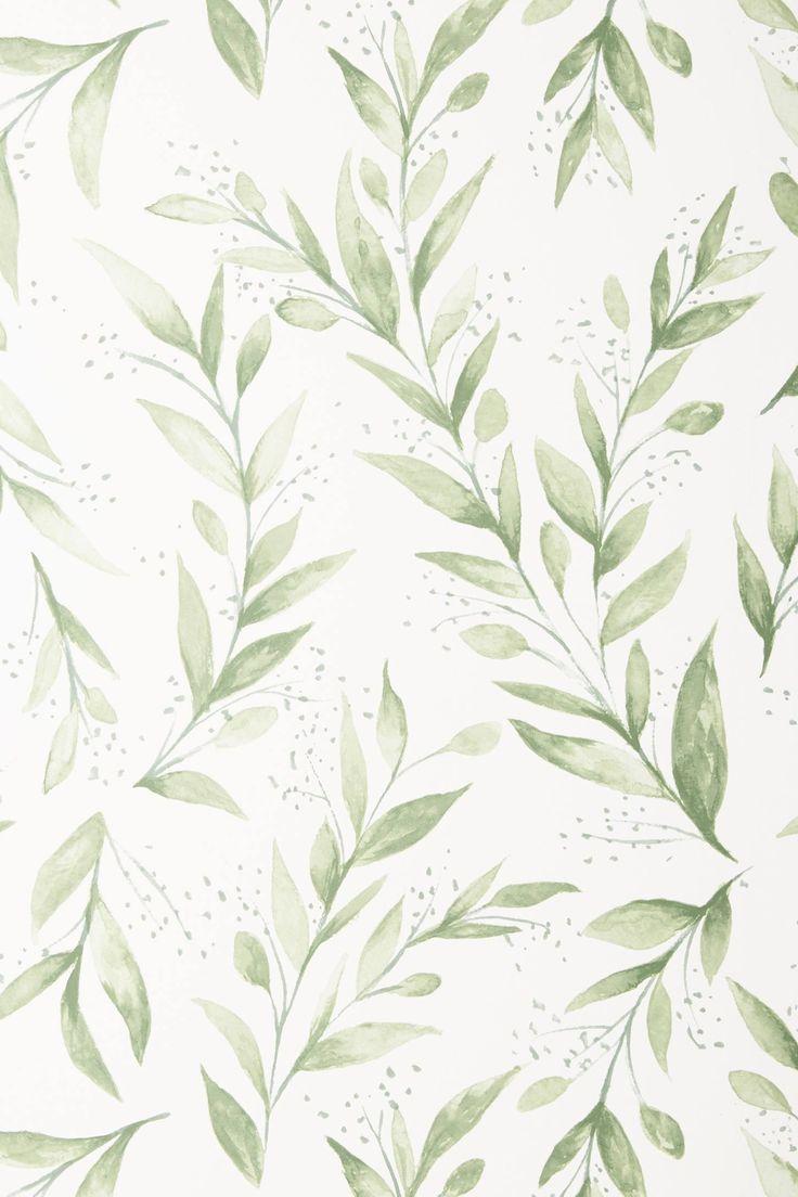 Magnolia Home Olive Branch Wallpaper Magnolia wallpaper