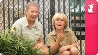 facts about australian crocodiles for kids - YouTube