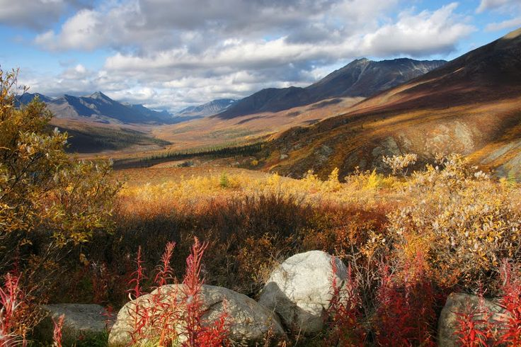 Tombstone Territorial Park - Dempster Hwy - 4 -Yukon, YT, Canada