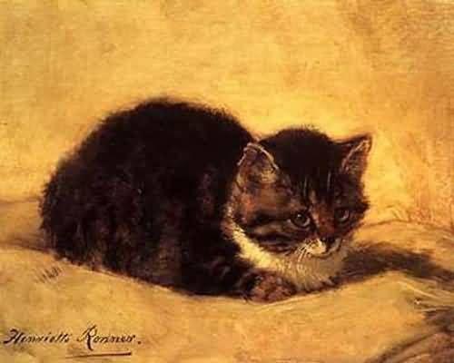Cat Henriette Ronner-Knip