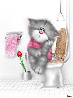Gatito  tierno                                                                                                                                                                                 Más