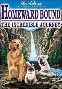 Amazon.com: Homeward Bound - The Incredible Journey: Michael J. Fox, Sally Field, Don Ameche, Don Alder, Ed Bernard, Kevin Chevalia, Jean Smart, Robert Hays, Duwayne Dunham, Caroline Thompson, Linda Woolverton: Movies & TV