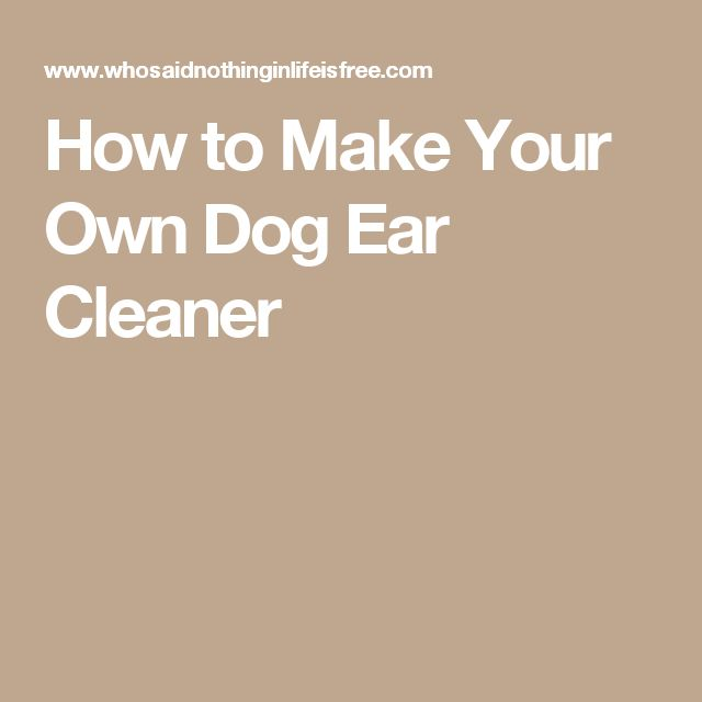 Make Your Own Ear Cleaning Solution For Dogs
