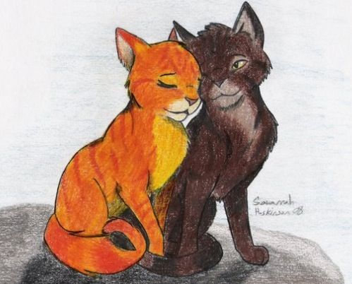 Squirrelflight X Brambleclaw Warrior Cats By Erin Hunter