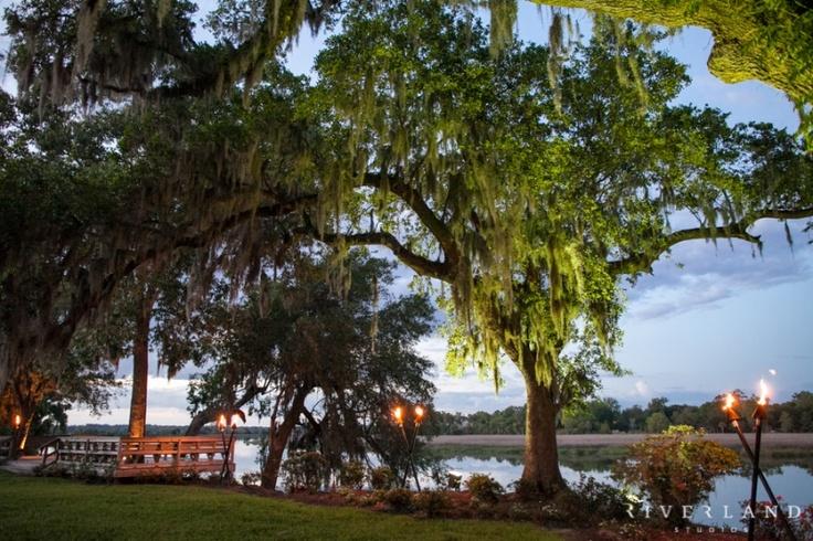109 Best Charleston Wedding Venues Images On Pinterest Wedding Places Wedding Reception