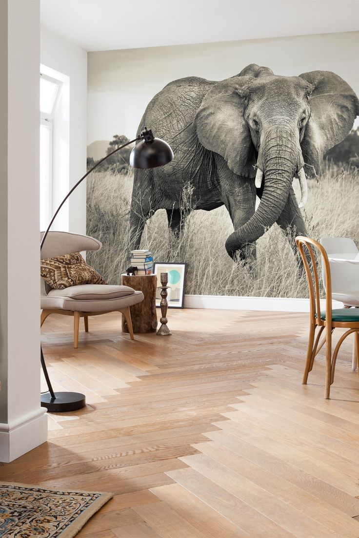 elephant mural by brewster home fashions on hautelook - Elephant Home Decor