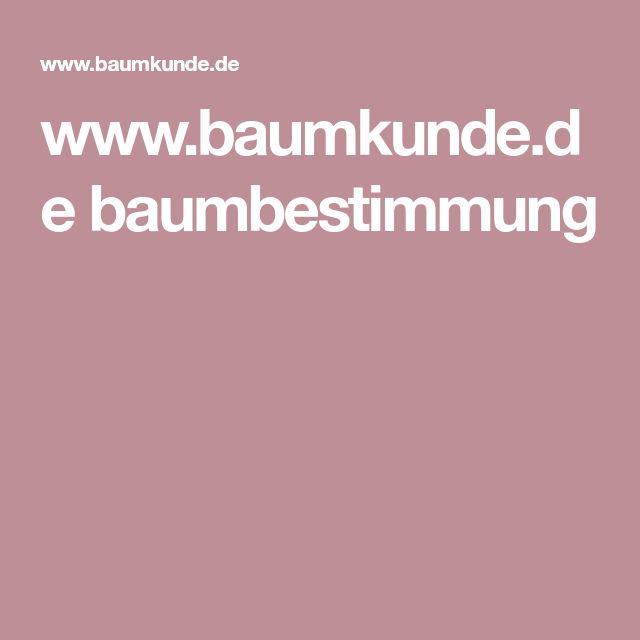 www.baumkunde.de baumbestimmung