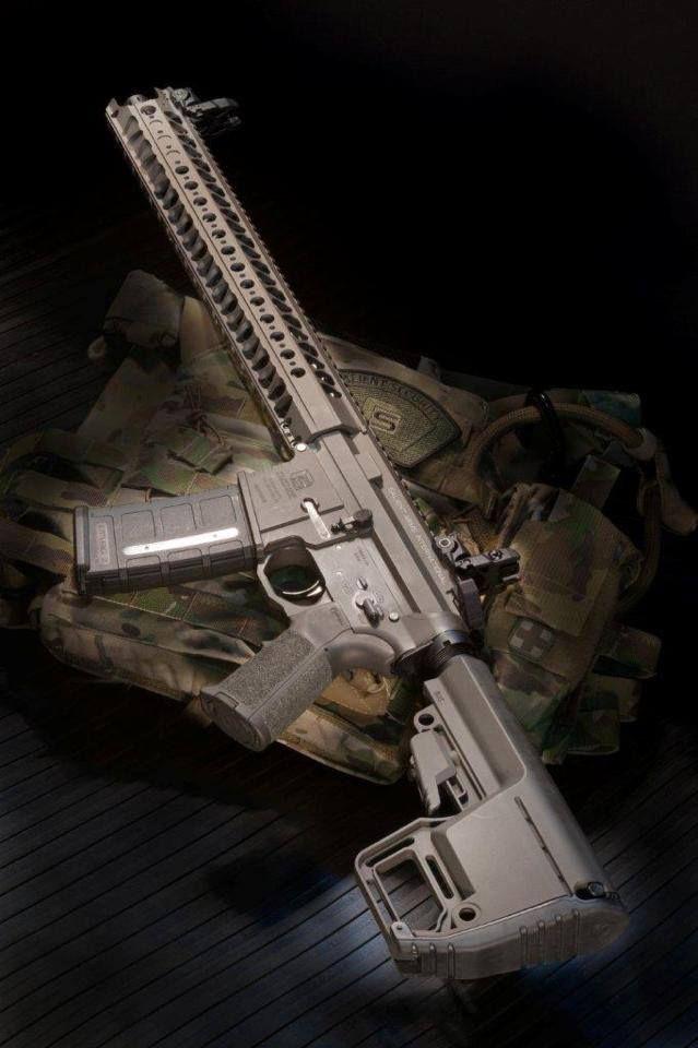 victran:  Salient Arms AR15 with LVOA rail      (via TumbleOn)