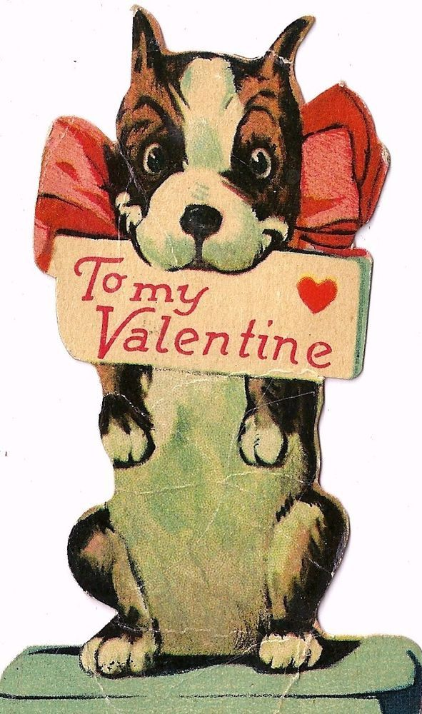 CUTE BOSTON TERRIER PUPPY DOG WITH VALENTINE GREETING / VINTAGE VALENTINE CARD