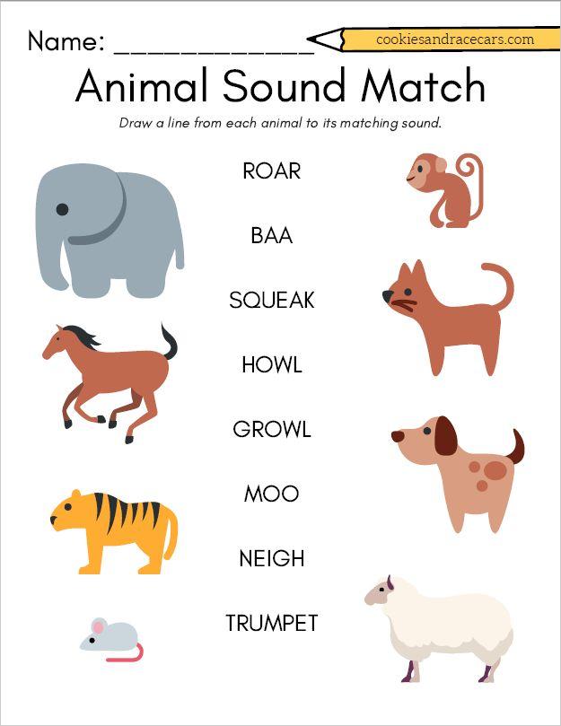 animal sound match worksheet for prek make the animal. Black Bedroom Furniture Sets. Home Design Ideas