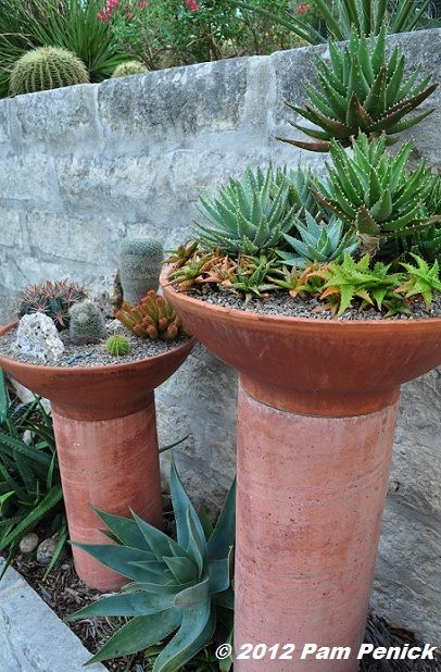 Terracotta Bowl Planters Atop Homemade Tinted Concrete Pillars