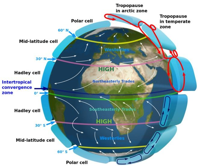 Climate models can show observations to be wrong  Hadley cells's place in the planet's atmospheric circulation. Kaidor, CC BY-SA