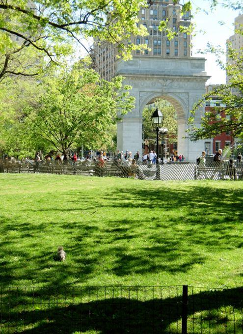 新緑の美しい、お散歩の楽しい季節ということで、今回は、ダウンタウンにあるワシントン・スクエア・パークへ。ニューヨーク大学のキャンパスに囲まれ、大学生や地元...