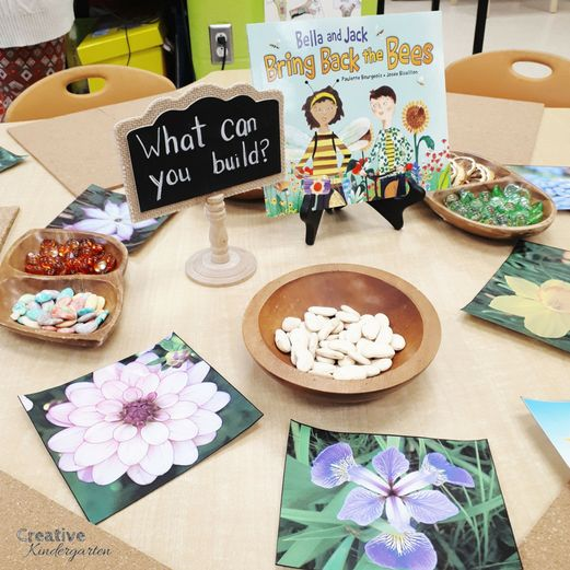 Inquiry centers for kindergarten seeds and flowers exploration for science activities.