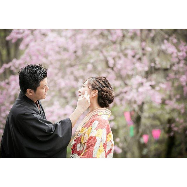 【miele_wedding0717】さんのInstagramをピンしています。 《#優しさ 猫氏がわたしの前髪をそっと直してくれた瞬間を写した一枚 * * * わたしのことをいつもよく見てくれていて、そういうさりげない優しさがすっと出てくる人です❇ いつもありがとう♥ #感謝#前撮り#前髪#春#桜#sakura#着物#kimono#wedding#weddingphotographer#weddingphoto#weddingidea#weddinginspiration#Japanesewedding#Japanesestyle#ig_wedding#instawedding#bride#brideandgroom#love#smile#happy#marry#romantic#engagement#ZQN#花嫁#プレ花嫁#卒花嫁》
