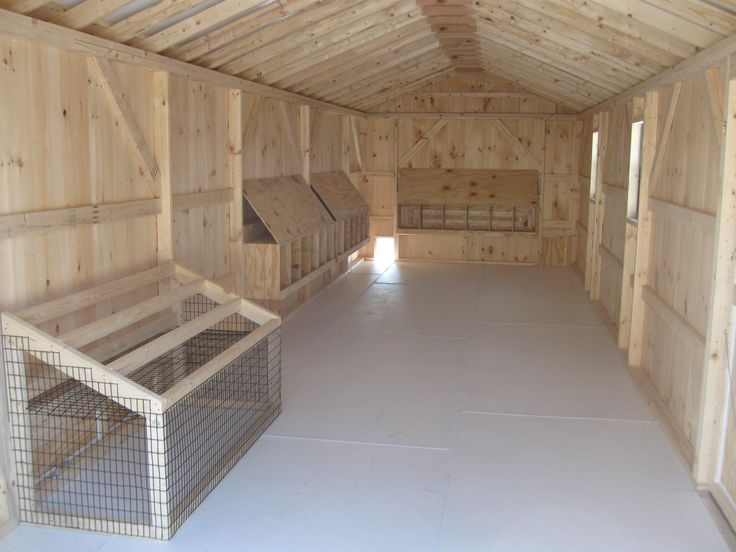 Chicken coop inside layout - photo#52