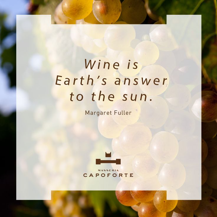 "MASSERIA CAPOFORTE | QUOTES ""Wine is Earth's answer to the sun."" Margaret Fuller #MasseriaCapoforte #Quotes #WineQuotes"