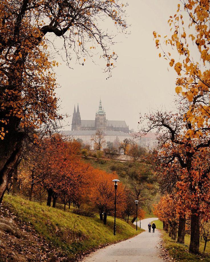 Podzim na Petříně. // Autumn in Petřín. #praguestagram #prague #praha #prag #praga #praguecastle #autumn #fall by praguestagram