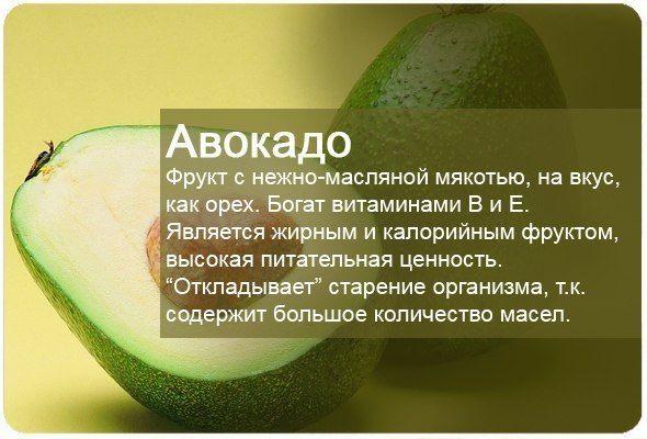 Авокадо. Avocado. Авокадо.