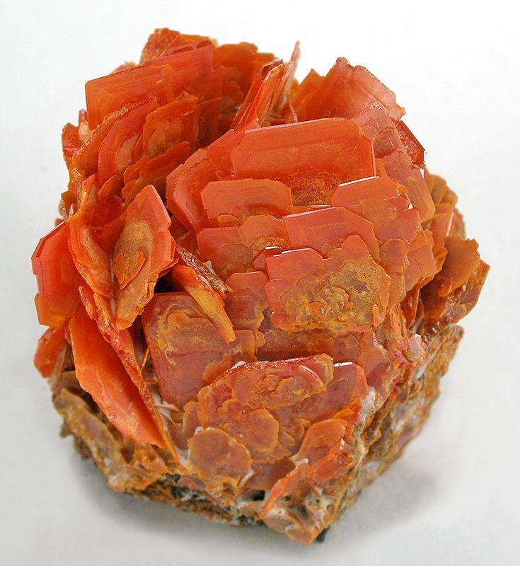 A rosette arrangement of orange-red Wulfenite crystals found near Urumqi…