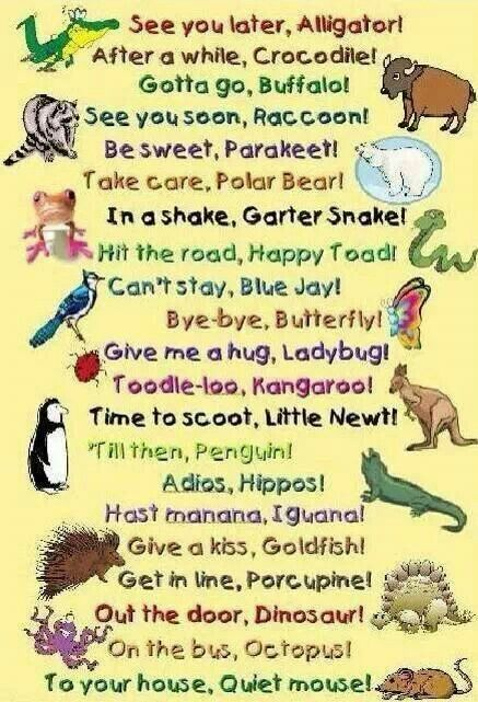 Animal Rhyme sayings