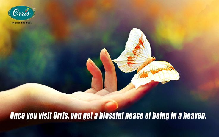 Once you visit Orris, you will get a blessful peace of being in a heaven on earth. #Orris www.orris.in