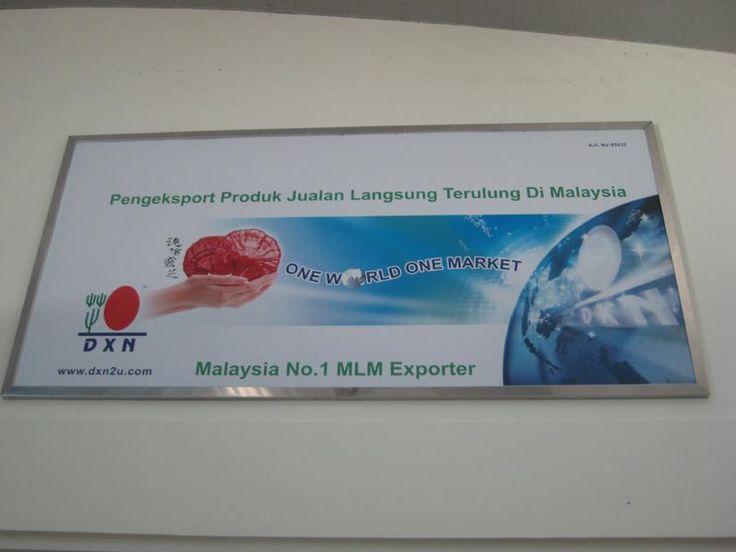 Alor Setar rep�l�t�r - A DXN a legnagyobb k�lf�ldre is sz�ll�t� MLM c�g Malayzi�ban.