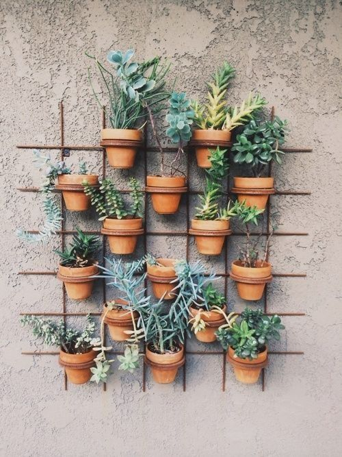 Terra cotta pots wall hanger. Cactus, succulents, drought tolerant