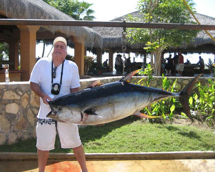 11 best fishing in cabo san lucas tips reviews images for San jose del cabo fishing report