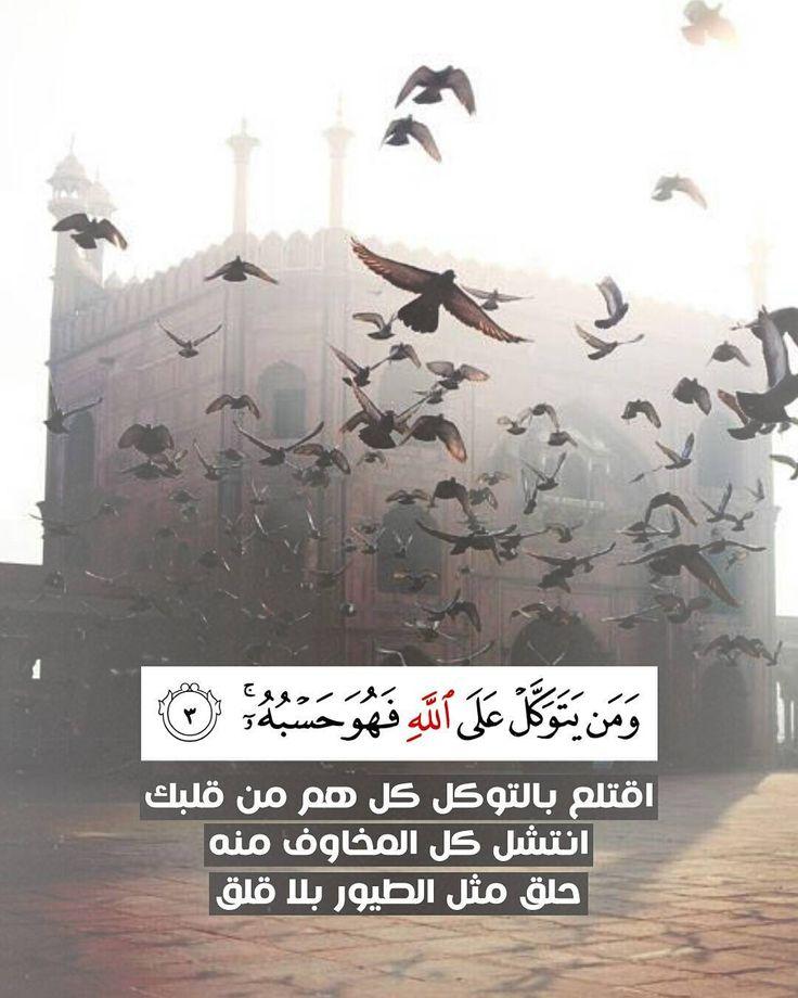 .. (ومن يتوكل على الله فهو حسبه) اقتلع بالتوكل كل هم من قلبك انتشل كل المخاوف منه حلق مثل الطيور بلا قلق _____________ منشن لغيرك ليتابع الحساب ولك اجره by heeekma http://ift.tt/1VXr4dl https://twitter.com/kalima_h http://ift.tt/1LU58Az http://ift.tt/1hKqXEA http://ift.tt/1VXr4dn http://ift.tt/1LU56sh http://ift.tt/1VXr5hr