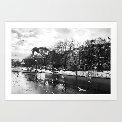 Amsterdam gulls Art Print by Francesca Vincis - $14.56