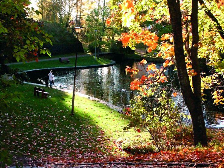 Kesäpuisto, Summer Park in autumn colours.
