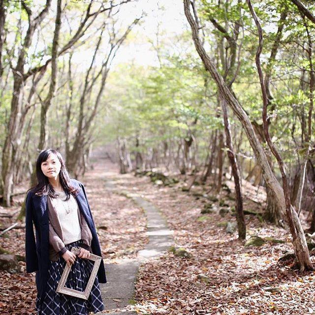 【uptoyou_akko】さんのInstagramをピンしています。 《ノルウェイの森のロケ地ポイント。監督が気に入って急遽撮影したらしいです。ほんまに素晴らしい場所でした。 #canon6d #sigma35mmart  #リラクシアの森 #兵庫 #神河町 #峰山高原 #ホテルリラクシア #森 #落ち葉の絨毯 #ノルウェイの森 #ロケ地 #ポートレート #portrait #額縁 #朝日 #木漏れ日 #ロケーションフォト #写真好きな人と繋がりたい #単焦点》