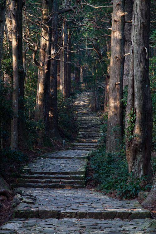 bluepueblo: Forest Stairs, Japan photo via margaret