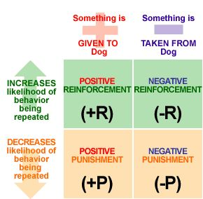 PR > B being repeated by reward. NR > B being repeated by removing an unpleasant stimulus. NR is important for escape/avoidance learning or avoiding something which is unpleasant – Avoidance learning involves both operant & classical conditioning. Punishment is aimed at weakening or suppressing a response– ++P reduces a B by assing stinulus (speeding ticket) --P removes a pleasurable stimulus (computer/toys)