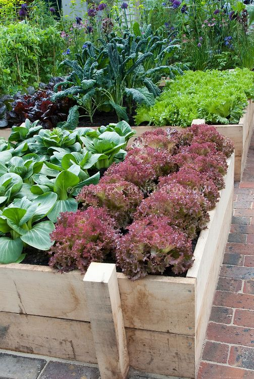 31 best images about front yard garden ideas on pinterest for Hanging vegetable garden ideas