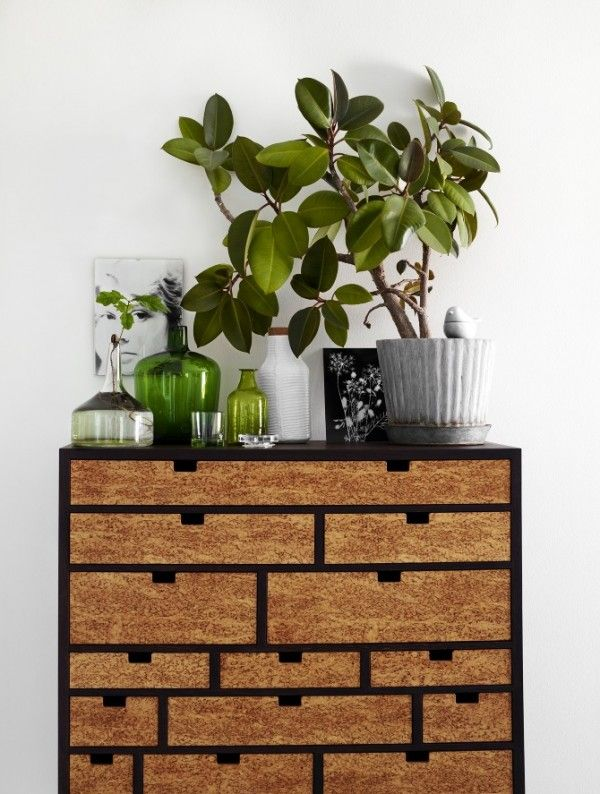 green/natural: Decor, House Plants, Ideas, Inspiration, Green, Interiors, Cabinet, Thaw Hellberg, Indoor Plants
