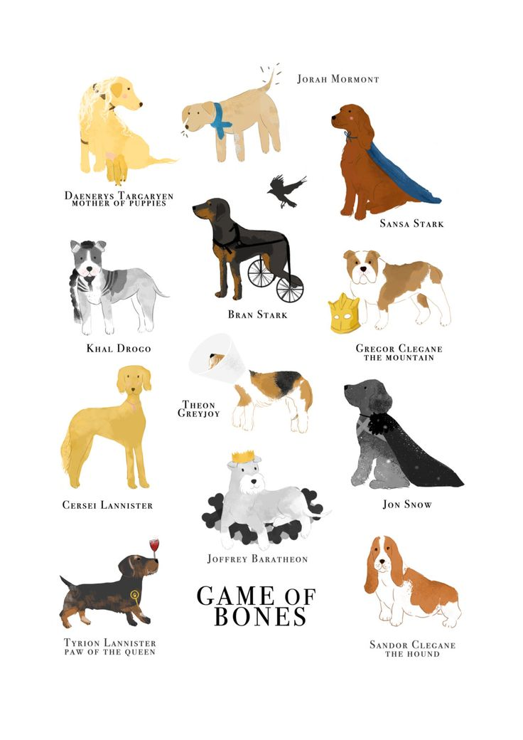 Game of Bones Funny Dog Illustration Print by LizzieMayDesign on Etsy