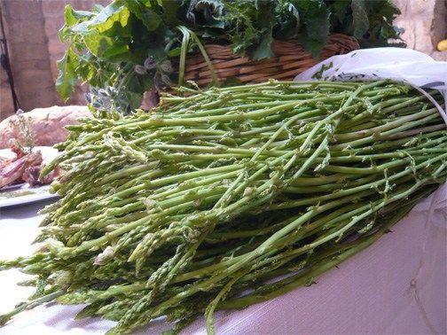 Occhio, malocchio, asparago e finocchio § Sagra dell'asparago e del finocchietto selvatico - Boroneddu (OR)