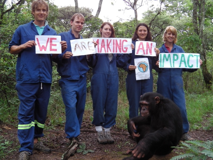 Happy International Volunteer Day to our past, present and future volunteers!! From our Chimpanzee Project