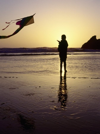 I love flying kites on the beach. Catch the Wind kite store in Oregon.