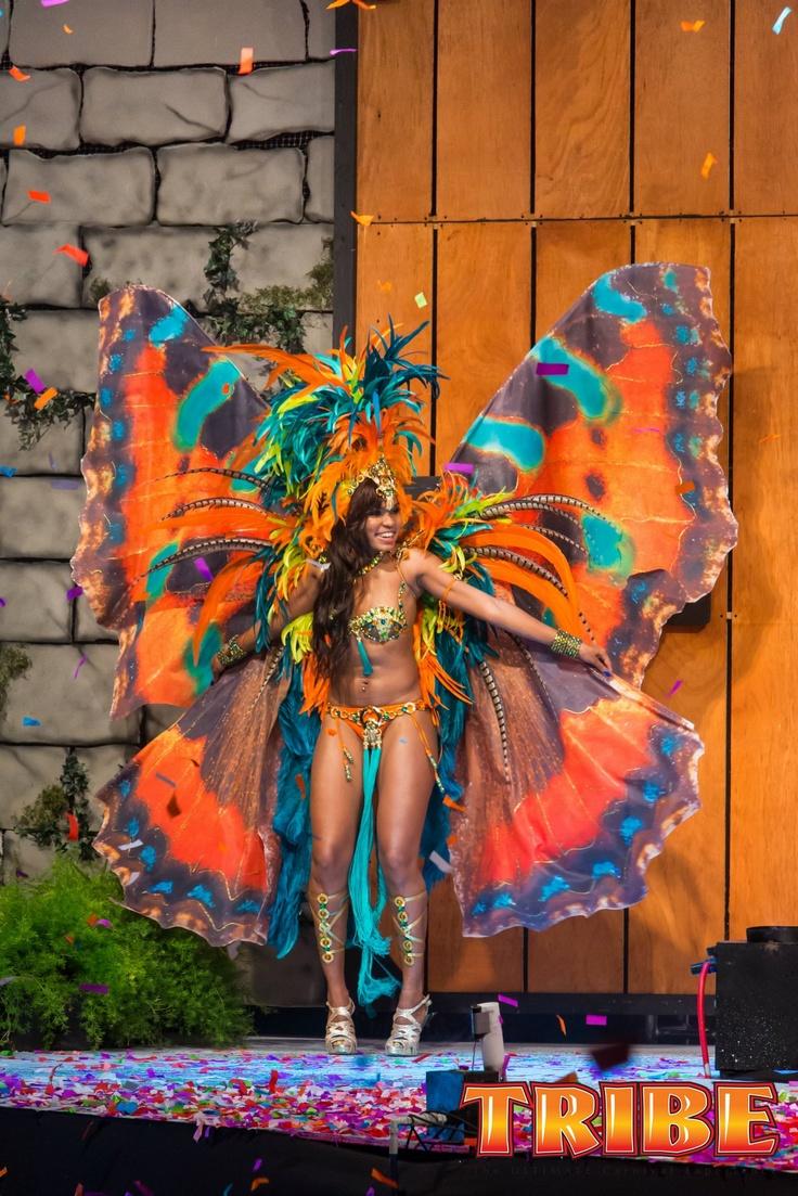 Celebrity Carnival   Trinidad Carnival Diary