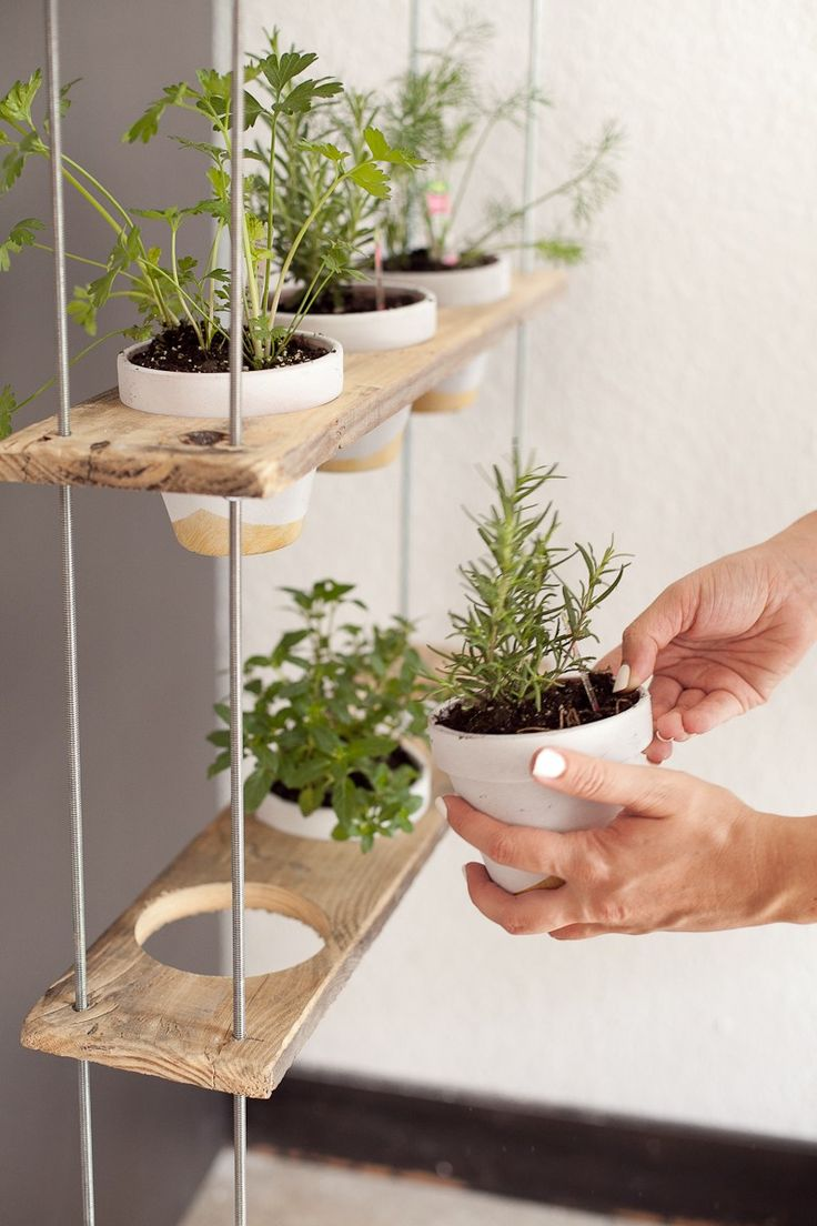 Custom Potted Hanging Herb Garden DIY 232