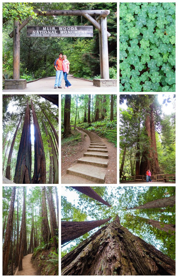Best Things to do in San Francisco, including biking the Golden Gate Bridge, best places to get pictures of the bridge, and hiking the redwood forest at Muir Woods. Pin this if you are going to San Francisco!!