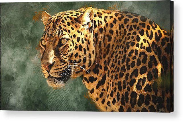 Leopard Watch Acrylic Print By Marvin Blaine Jaguar Animal Jaguar Wallpaper Animals