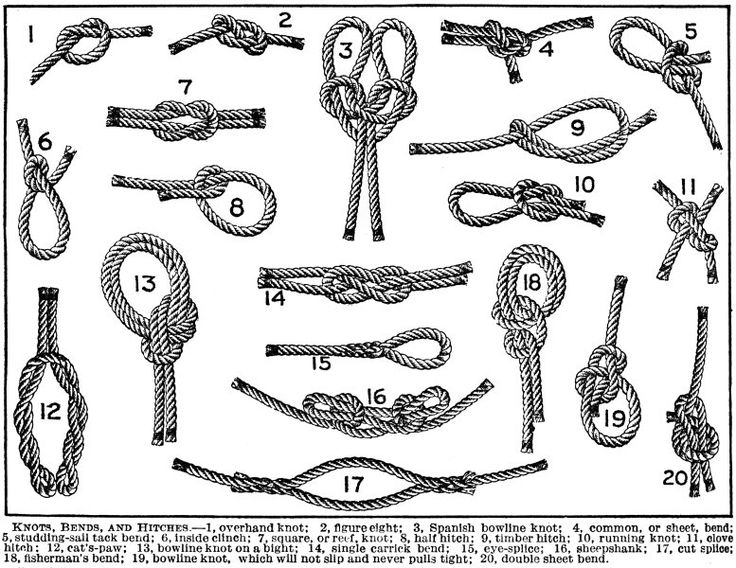 33 best images about knots on pinterest hunting  the