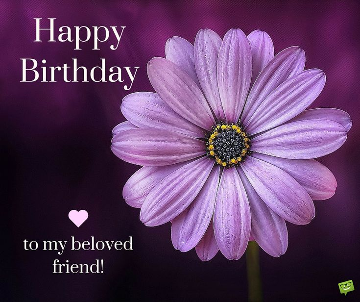 17 Best Friend Birthday Quotes On Pinterest
