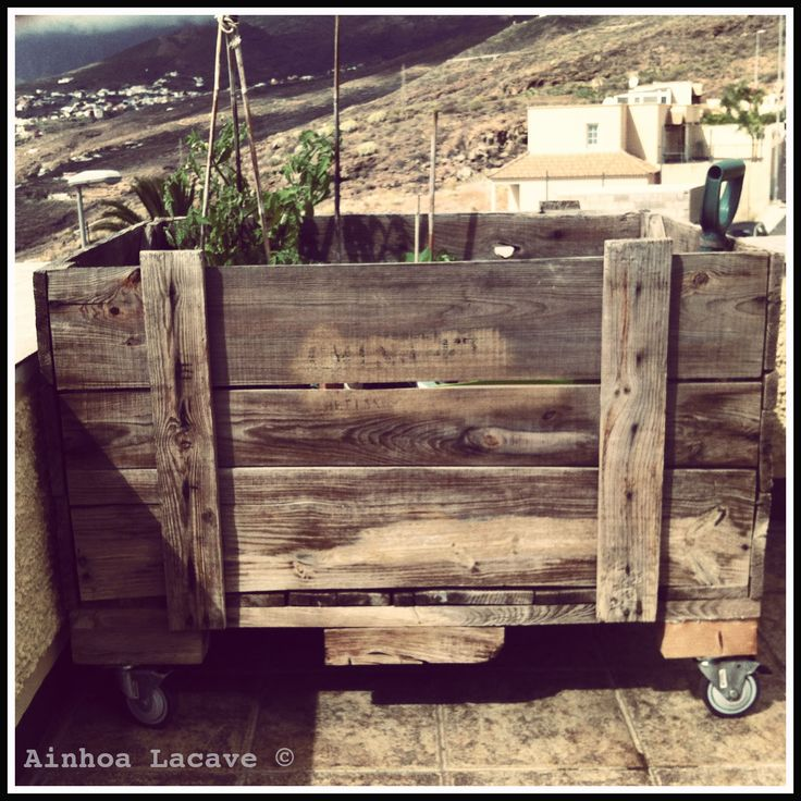 Recuperando de la basura caja de madera encontrada en la - Huerto de urbano ...